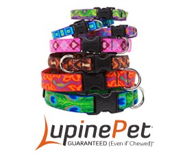 Originals Designer Pattern Collars. Available for Small, Medium & Large Dogs by Lupine Pet