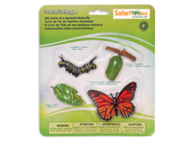 Hand-painted, realistic, best selling life cycle by Safari LTD