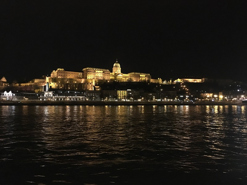 Buda Castle, right across the river from the Euro Beauty session